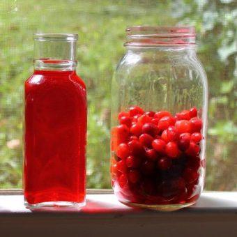 cranberry vodka4 895x500 1